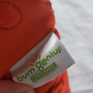 BumGenius Other - BumGenius organic Elemental 2.0 all-in-one diaper
